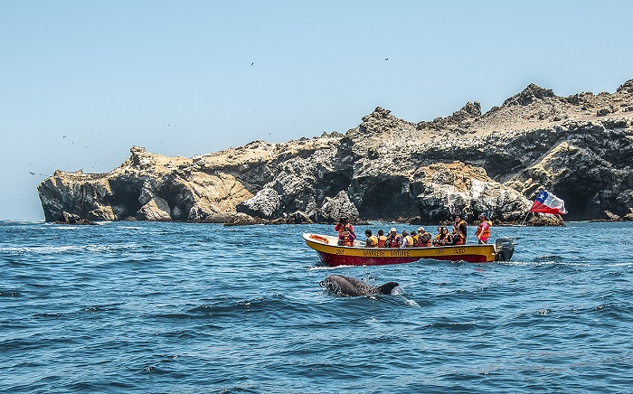 Imagen captada en isla Choros ganó V Concurso de Fotografía Turística  de APTUR Chile