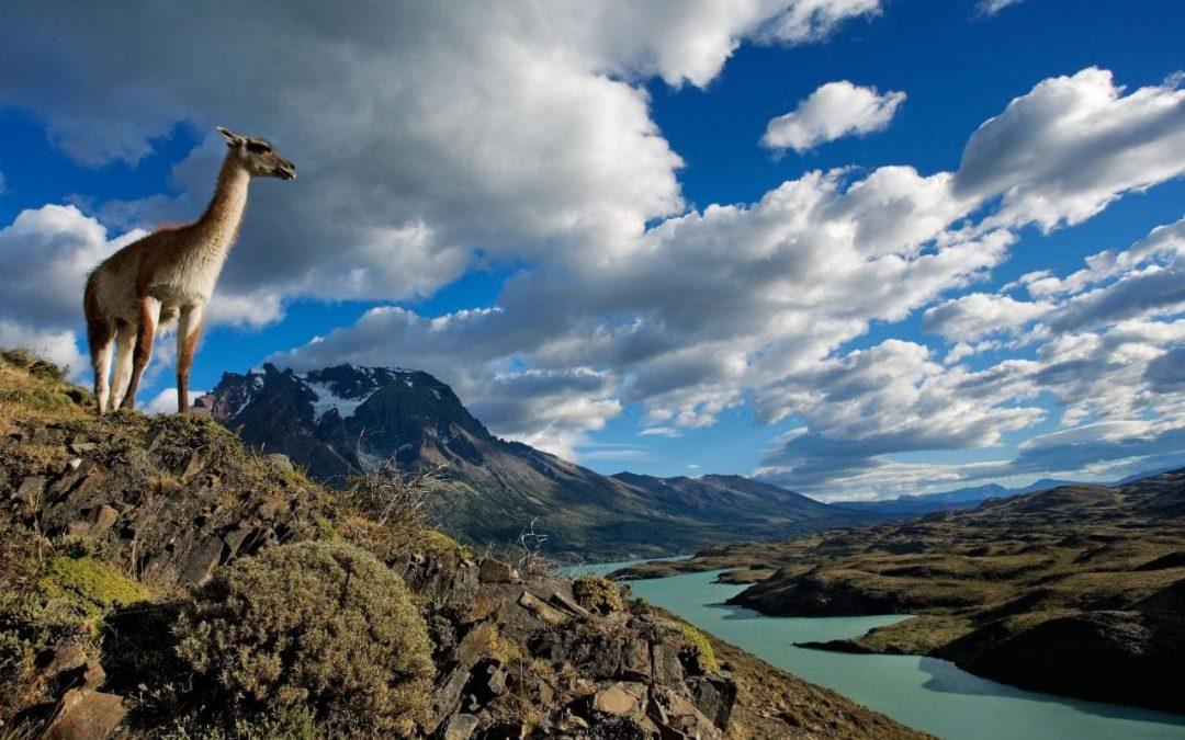 ¡A viajar por Chile y el mundo!
